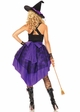 2-Piece Broomstick Babe Costume inset 1