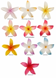 "3.15"" Pointy Hawaiian Flower Hair Clip (available in 10 colors)"