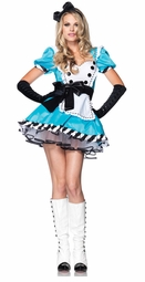 Charming Alice Costume with Dress and Headband