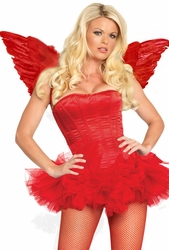 Halloween Costume Wings