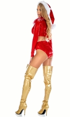Sparkle Christmas Santa Costume