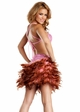 Pink Sequin and Feather Dress inset 1