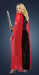 Plus Size Female Sword Warrior Costume