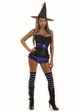 Ravishing Witch Corset Costume with Shorts, Belt, Hat and Stockings inset 1