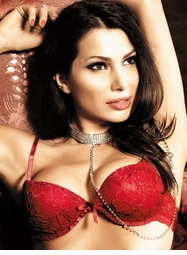 Red Flower Lace Bra With Underwire