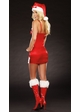 Red Satin Christmas Costume Dress and Hat inset 1