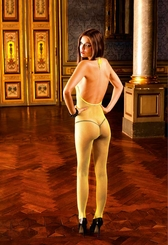 SALE Yellow Fishnet Bodystocking with Open Back