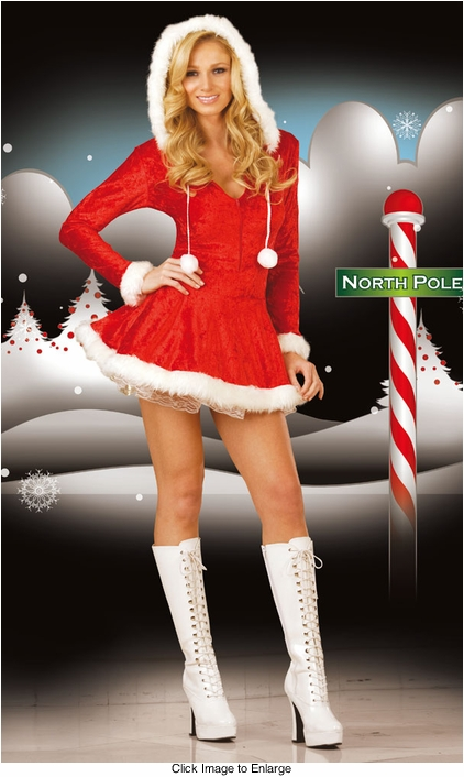 Sleigh Belle Christmas Costume Dress with Hood and Attached Petticoat