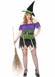 Spell Binding Witch Costume inset 1