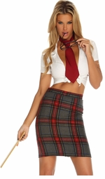 Tantalizing Teacher Sexy Costume