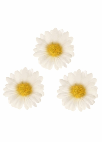 Three White Daisy Flower Hair Clips