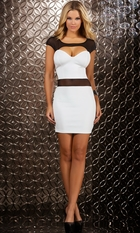 Vixen Mini Dress with Mesh Detail