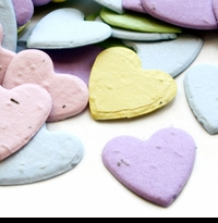 Seed Paper Hearts Wedding Confetti - Pastel Color Mix
