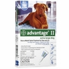 4 MONTH Advantage II Flea Control Extra Large Dog (for Dogs Over 55 lbs.)