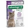 6 MONTH Advantage II Flea Control Large Cat (for Cats over 9 lbs.)