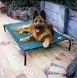 "COOLAROO Pet Bed for Large Dogs  (51.1"" x 31.5"")"