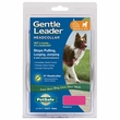 Petsafe® Gentle Leader® Quick Release Headcollar - Raspberry (Medium)