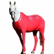 Hidez Horse Compression Suits - RED (66 - 67 3/4 inches)