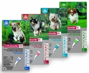 K9 Advantix® for Dogs