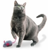 Unique Cat Toys for Cats