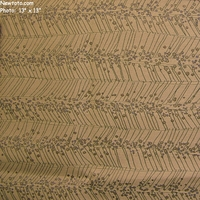 "7 3/8 Yard Remnant of ""Billow - Palm Beach"" Outdoor Floral Stripe Upholstery Fabric from Architex� International"