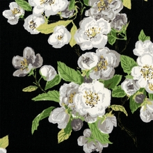 """Primrose Patio - Licorice"" White Rose Floral and Black Print Fabric by Waverly"