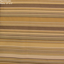 """Jambi Stripe - Beach"" Crypton Striped Upholstery Fabric from CF Stinson Inc"
