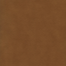 """Maine - Camel""  Tan Vinyl Flannel Backed Fabric by Deitsch Plastic Co., Inc"
