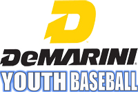 DeMarini Baseball: YOUTH Bats
