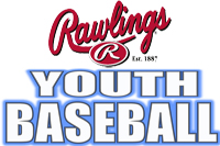 Rawlings Youth League Bats