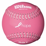 Wilson 12 in Fastpitch Softball WTA9010BPink - 1 DZ