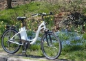 EcoBike Elegance: Do It Yourself