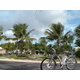 eZee Cadence electric bike, fun in Florida