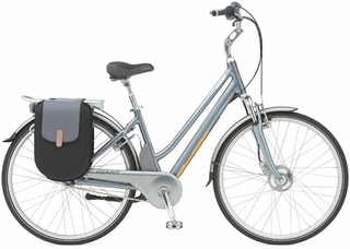 Step-Through Electric Bikes: Great for Men and Women