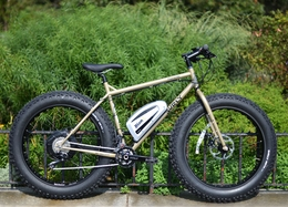 Surly Moonlander with 36V custom BionX motor
