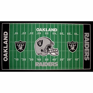Oakland Raiders 28