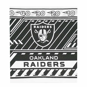 Oakland Raiders Book Covers - Click to enlarge
