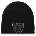 Oakland Raiders New Era Frost Tide Knit
