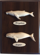 2 Whales & Name Plates
