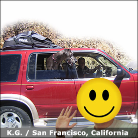 Ford Explorer Luggage Roof Bag with Thule 846 Quest Soft Roof Bag