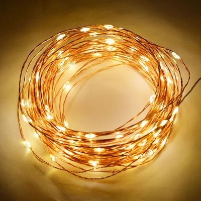 100 Warm White Led Waterproof Copper Wire Micro Fairy