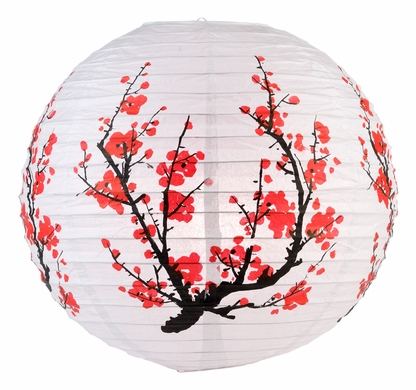 plumtree asian singles Prunus mume is an asian tree species classified in the armeniaca section of the  genus prunus  pinzimei xing (品字梅型) [pleiocarpa form] jiangmei xing (江 梅型) [single flowered form] gongfen xing (宮粉型)  monograph yuanye and  in it he described the plum tree as the beautiful woman of the forest and moon.
