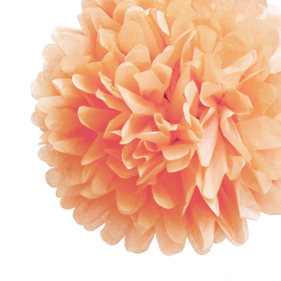 8 quot blush tissue paper pom poms flowers balls hanging decorations 4 pack ebay