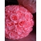 "12"" Pink Rose Flower Ball Lantern"