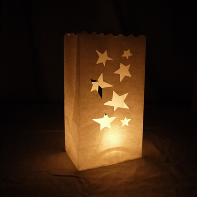 Large Star Paper Luminaries Luminary Lantern Bags Path