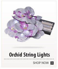 Orchid String Lights