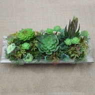 "Realistic Succulents Plant in 10"" Wooden Plate - Table Centerpiece"