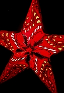 """24"""" Red Paisley Paper Star Lantern, Hanging (Light Not Included)"""