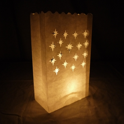Small Starburst Paper Luminaries Luminary Lantern Bags