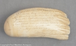 Antique Sperm Whale Tooth with Scrimshaw Memorial